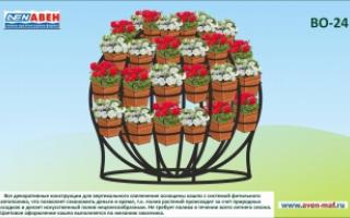 Вертикальное озеленение ВО-24